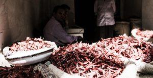 Spice Markets, Delhi